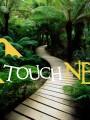út a trópusi fák alatt